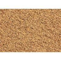 求购收购大米、碎米、糯米、稻谷